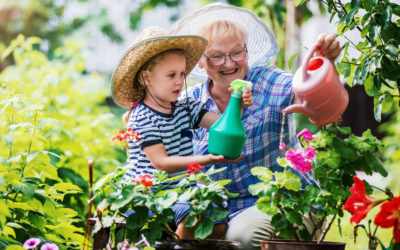 Bellevue PT Offers Back- and Joint-Friendly Gardening Tips for Seniors